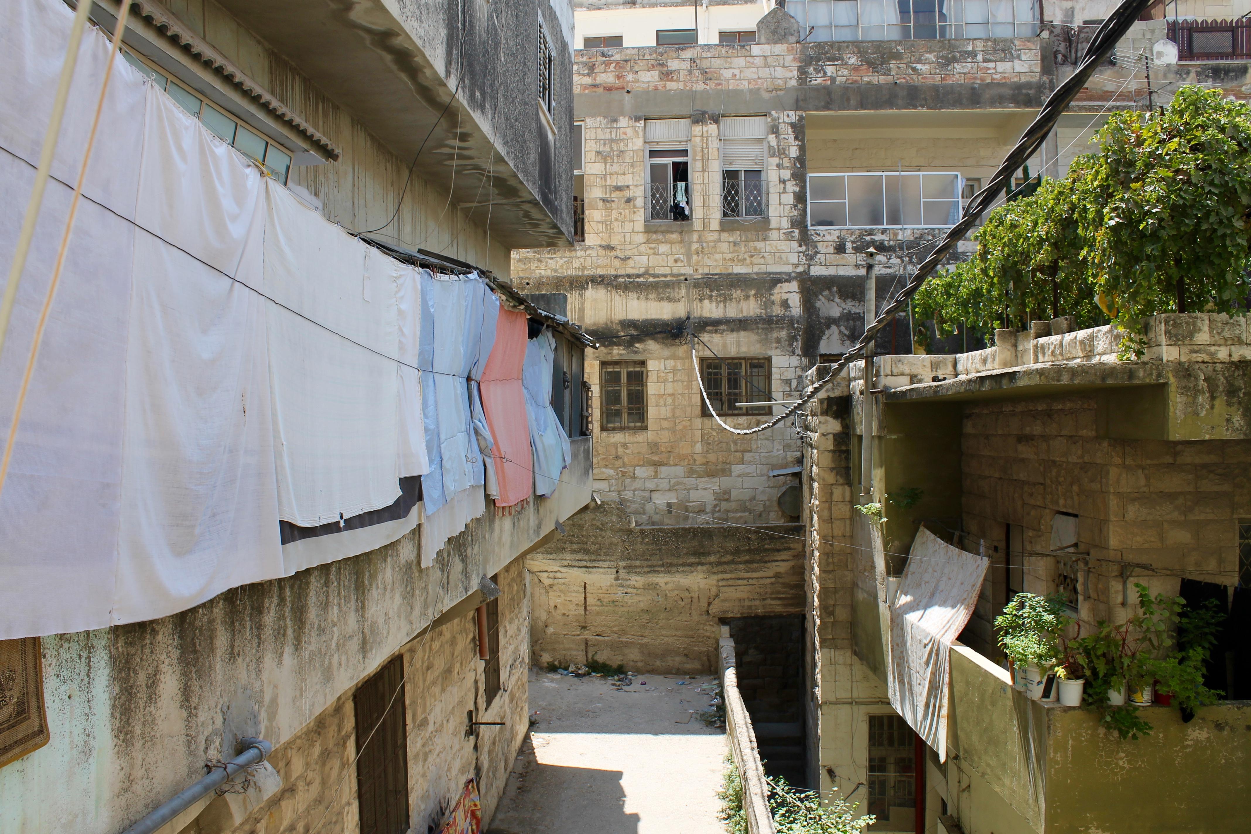 Sprachlos in Palästina – sobrevivo
